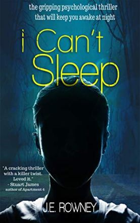 I Can't Sleep by J E Rowney